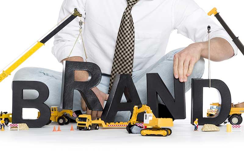 ブランドホロタイプ®・モデルとパーセプションフロー®・モデルの導入(ブランド構築と成長)の支援